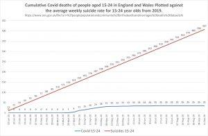 Cumulative deaths 15-24 v suicides.jpg