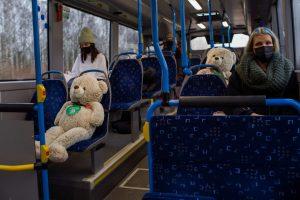 finnish teddy bus.jpg