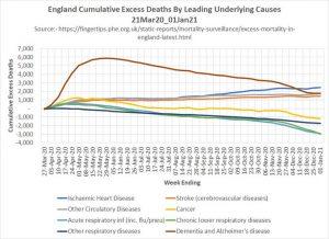 210121 Decline in other deaths.jpg