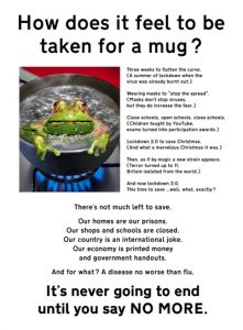 Frog-tn.jpg